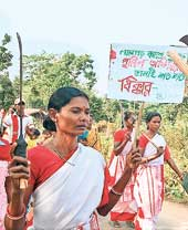 A procession of the tribals in Bankura's Mejia. Picture by Gour Sharma