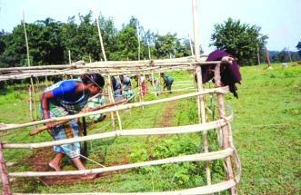 Maoist training