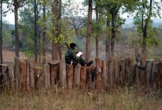 reads Maoist literature as he sits on the boundary of a temporary base in the Abujh Marh forests